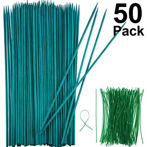 Stake de Plante en Bois Vert Stake en Bois de Bambou Choix Naturels Support de Plantes Florales et 100 Pièces 15 cm de Long Cravates à Torsion Métalliques Vertes (40 cm, 50 Pièces)