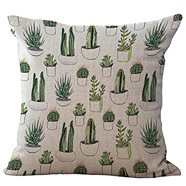 Woaills Throw Pillow Cases, 18 x 18 Fruit Cactus Simple Square Pillowcase Cushion Covers with Hidden Zipper (Colorful G)