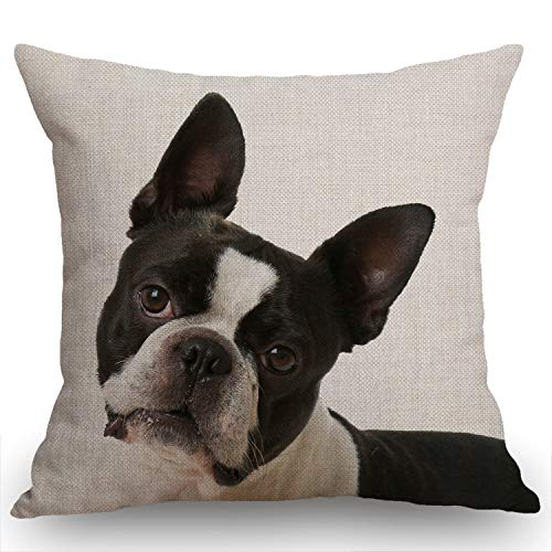 Swono French Bulldog Decorative Throw Pillow Cover Case,Boston Terrier Cotton Linen Outdoor Pillow Cases Square Standard Cushion Cover for Sofa Couch Bed Car 18x18 inch