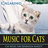 Relaxation Music for Exotic Short Hair Cats