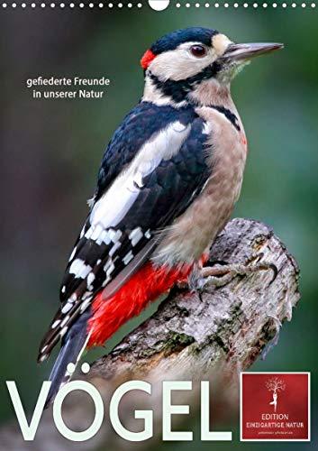 Vögel - gefiederte Freunde in unserer Natur (Wandkalender 2022 DIN A3 hoch)