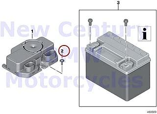 2 x BMW Genuine Motorcycle Alarm / RDC DWA Module Oval-Head Screw With Washer G450X R1200GS R1200GS Adventure R1200S K1200S K1300S K1200R K1200R Sport K1300R K1200GT K1300GT S1000RR S1000R K1600GT K16