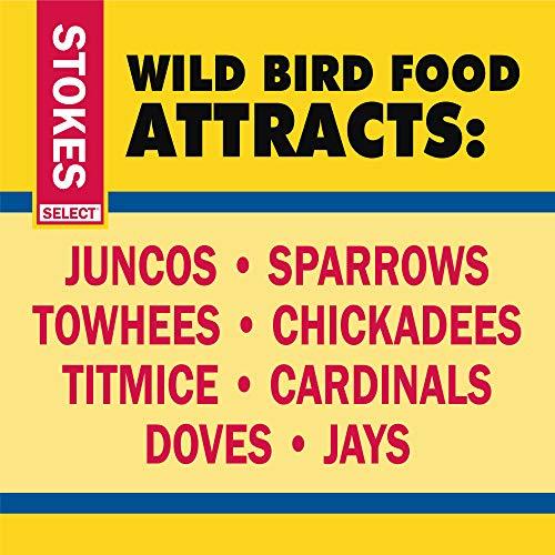 Stokes Wild Bird Food Select Bag, 10 lb