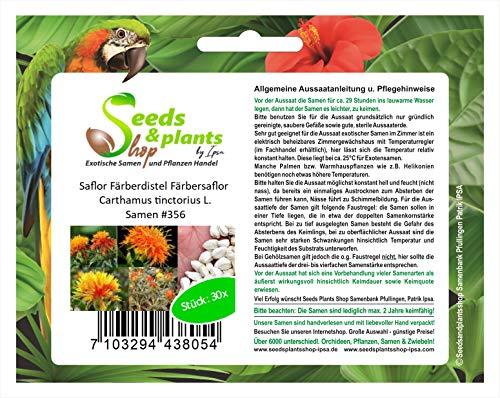 30 cártamo alazor teñido alazor Carthamus tinctorius L. semillas #356