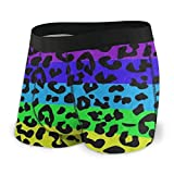 Mens Underwear Rainbow Animal Leopard Print Boys Boxer Briefs Trunks Low Rise Underpants Man Men S