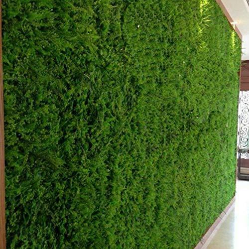 aniceday Jardín Vertical Artificial Pared Césped Planta Flor Cesped Plantas Guirnalda Decorativa,Seto Artificial para Cerca De Balcón, Protección De Privacidad, Protección UV