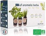 cultivea set completo - fai crescere le tue di erbe aromatiche - 100% semi ecologici e biologici - semi con 3 vasetti di vetro – diy - (erba cipollina, cipollina, basilico)