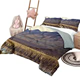 Nomorer 3 Piece Coverlet Set King Size Alaska Bedspread Bed Cover for All Season Idyllic Countryside