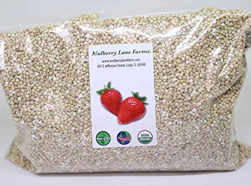 Buckwheat, 5 Pounds USDA Certified Organic, Non-GMO, Hulled, Whole, (Groats) Bulk