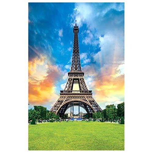 MerryWould Puzzle de 1000 Piezas,8 Rompecabezas de Lugares de interes (Rompecabezas para Adultos) 27.56 x 19.69inch (Torre Eiffel)