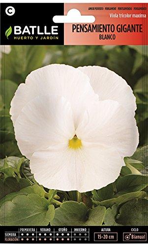 Semillas de Flores - Pensamiento Gigante blanco - Batlle