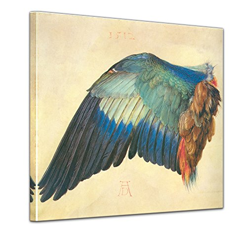 Wandbild Albrecht Dürer Flügel Einer Blaurake - 40x40cm Quadrat - Alte Meister Berühmte Gemälde Kunstdruck Bild auf Leinwand