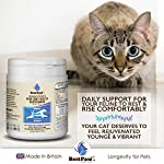 Best Paw Nutrition - Glucosamine pour Chiens et Chats - Soutien articulaire et complément Alimentaire pour Chiens et Chats - 300 Tablets #1