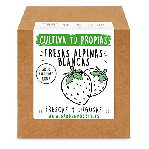 Garden Pocket Kit de culture de fraises blanches