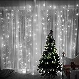 BG-life Weihnachten Interior Gardinen Weiß Nettolicht, Außen Garten Dekoration Lichterketten, Geeignet für Night Party, Festival Celebration (3m x 2m-320LED) USB Remote