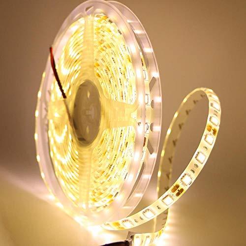 Tira de luz LED de 12 V 5050 SMD RGB RGBW WW de tira flexible de 60 ledes/m de cinta LED para decoración del hogar, lámpara de coche, color verde, 5 m