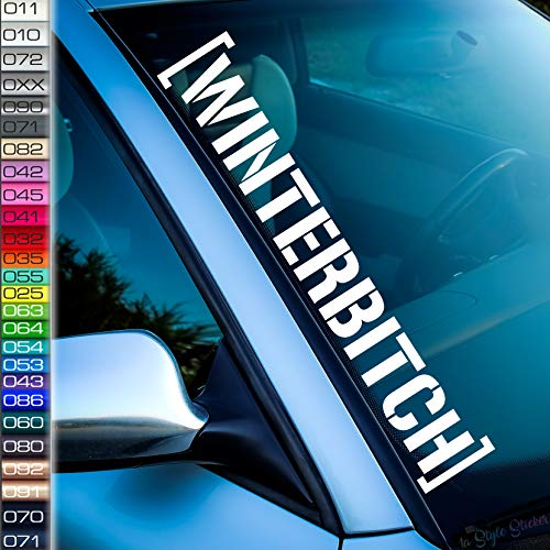 Winterbitch Frontscheiben-Aufkleber Salz Schnee Auto-Sticker Winter Motiv Winterhoon Snow car schi Dirty Girl Power ESP Off Decal