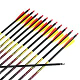 Misayar 12Pcs/lot 30 Inch Carbon Arrows Fletched 3 Inch Vane with Field Points for Recurve Compound Bow...