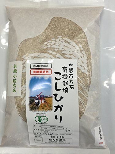 無農薬 有機栽培米 JAS認定 玄米 令和2年産 石川県産 有機若緑小粒玄米 食用玄米   (2.0kg)