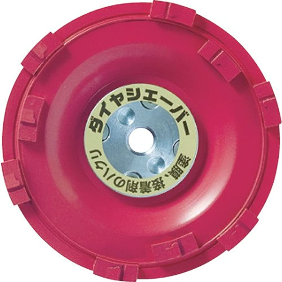 キリマンジャロ対立禁止するナニワ(NANIWA) ダイヤシェーバー 塗膜はがし レッド FN-9223