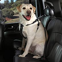 Cruising Companion Black Car Harnesses for Dogs Travel Safety Secure Seat Buckle Dog Nylon Strap