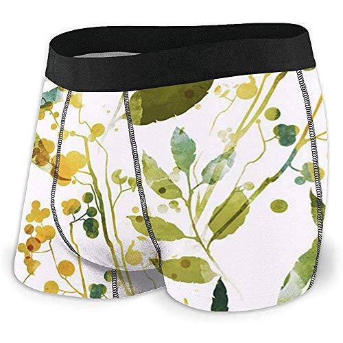 Web--ster Boxer Briefs Shorts Custom Men 'avec des sous-Vêtements Imprimés De Fleurs Et De Fruits Pack XL