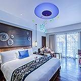 LUSUNT Lámpara de techo LED regulable, RGB, Altavoz Bluetooth, APP, Control Remoto 2.4G, Función de memoria, 35w 2200lm Φ40cm Sala Dormitorio Cocina Comedor Baño Cuarto de los niños luz de techo