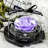 Regali per Lei Rosa Stabilizzata Hot Rose in Flask Beauty And The Beast Eternal Rose Red Rose con...