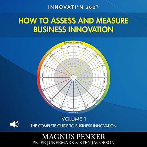 How to Assess and Measure Business Innovation audiobook cover art