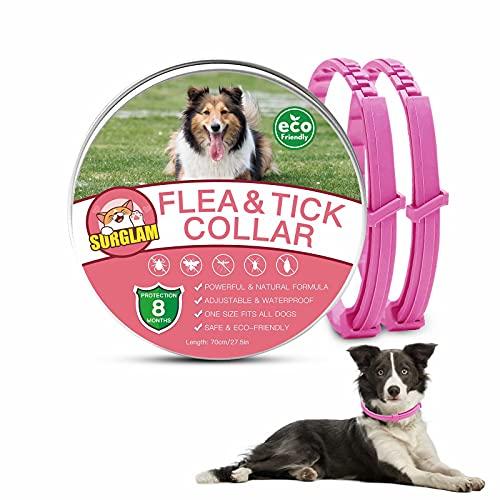 Collare Antipulci Cani, Collare Antiparassitario per Cane, Collare Antipulci e Zecche per Cani, Collare Regolabile Impermeabile, 8 Mesi Di Protezione, 70 cm Taglia Unica
