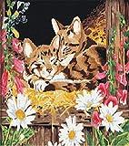 KSKD - Kit de pintura al óleo digital, regalo para adultos y niños, pintura de número, kit de decoración para el hogar, diseño de gato dormido con cornice