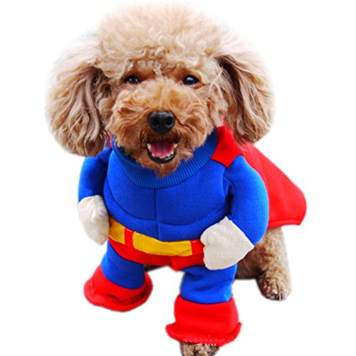 Alfie Pet - Landry Superman Costume - Size: Small
