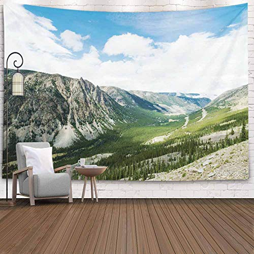 Shorping Nature Tapestry, Tapestry 80X60Inches Christmas Tapestry Winter Wall Tapestry Mountain Tapestry for Home Room Dorm Tapestry Highway Through Wyoming Montana The Most Scenic Drive in Us on Way