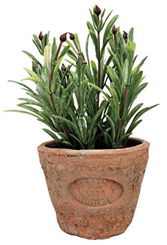 Esschert's Design AH011 Pot de Fleurs artificielles en Terre Cuite vieillie Romarin