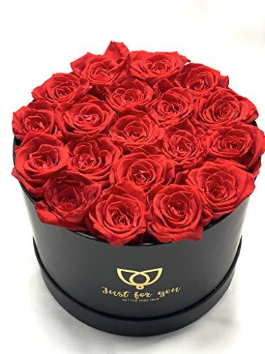 19 Rosas Rojas preservadas en Caja Regalo Bombonera - Rosas eternas San Valentín - Flores preservadas (19 Rosas Rojas)