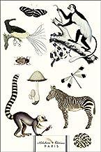 Noir Et Blanc (Black & White Animals): Nature Is the Designer!