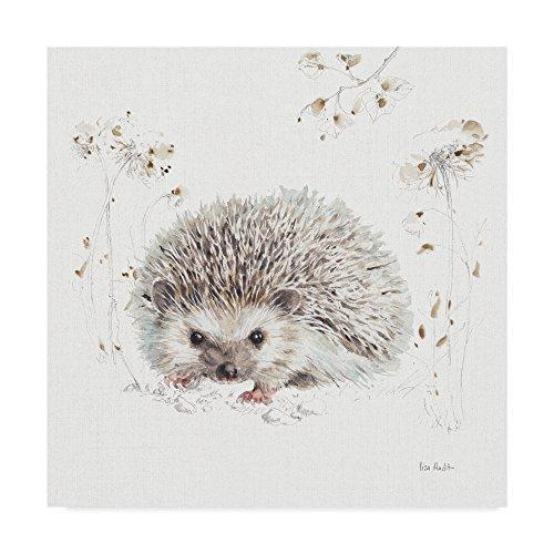 Trademark Fine Art Woodland Walk XII Hedgehog by Lisa Audit, 14x14, Multicolor