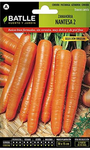 Semillas Hortícolas - Zanahoria Nantesa 2 sel. Urgelba - Batlle