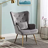 Altrobene Velvet Accent Chair, Tufted Lounge Chair, Contour Arm Chair with Pillow for Living Room Bedroom, Golden Finished, Grey