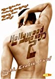 Hollywood Bad Boys Nude Auditions, Vol. 2 by Ariztical by Steve Malis