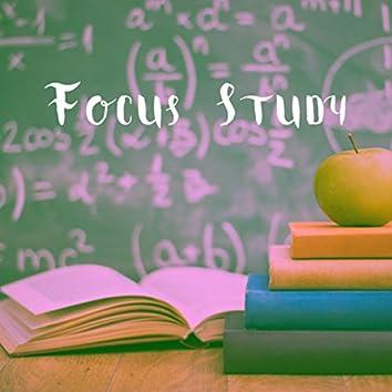 Focus Study