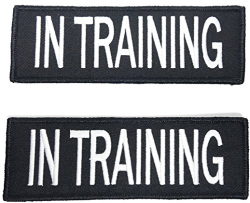 Leashboss in Training Dog Patch for Vest - Embroidered 2 Pack - Hook and Loop Both Sides (in Training, 1.5 x 4 Inch)