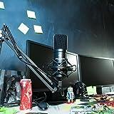 IMG-2 auna mic 900 microfono a