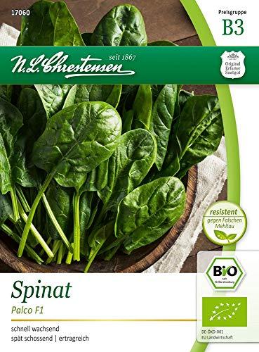 N.L. Chrestensen 17060-nl Spinat Palco F1 (Bio-Spinatsamen)