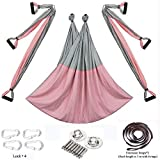 Chilly Aerial Yoga Swing Set - Yoga Hammock/Trapeze/Sling Kit + Extension Straps - Antigravity Ceiling Hanging Yoga Sling - Inversion Swing (Basic kit+Extension Straps, Pink/Gray)