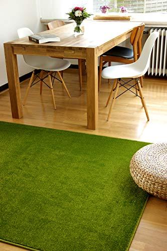 Alfombra Moderna Kolibri Verde 160x230cm - Alfombra Pelo Corto Colorida y de fácil Cuidado