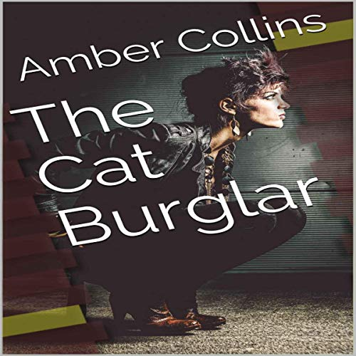 The Cat Burglar audiobook cover art