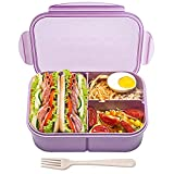 Bento Box,Bento Box Adult Lunch Box,Ideal Leak Proof Lunch Box Containers,Mom's Choice Kids Lunch Box,No BPAs and No Chemical Dyes,Microwave and Dishwasher Safe Bento Lunch Box by MISS BIG (Purple, L)
