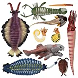 TOYMANY 10PCS Cambrian Sea Creature Animal Figurines, Plastic Ancient Marine Animal Toy Figures with Dunkleosteus,Cephalaspis,Opabinia, Prehistoric Educational Learning Toys School Project