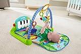 Zoom IMG-2 fisher price palestrina baby piano
